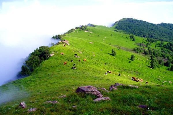香格里拉旅游景点